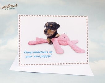 New Puppy, New Puppy Card, Puppy, Puppy Card, Dog, Jack Russell Terrier, Greeting Card, Dog Card, Puppy Dog Card, Puppy Card, Cute Puppy