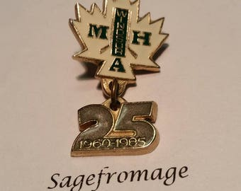 Windsor MHA 25 pin