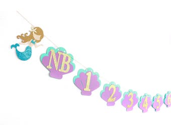 Mermaid Monthly Banner, Mermaid Newborn Banner, Mermaid 1st Birthday, Under The Sea Party, Mermaid Newborn Banner