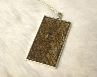 Real Snake Skin Pendant Necklace - Taxidermy Jewelry