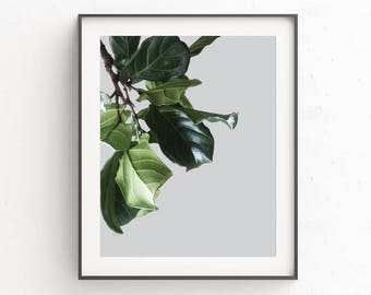 Botanical Print, Plant Print, Downloadable Prints, Bedroom Wall Decor, Digital Prints, Minimalist Art, Printable Wall Art, Rustic Wall Decor