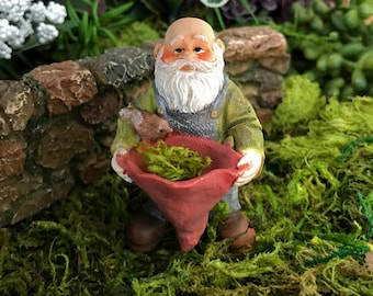 Miniature Gnome with Bird Feeder-Bird Bath-Planter Hat
