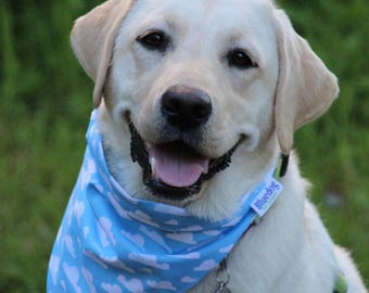 Cloudy sky dog bandana