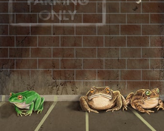 Frog Parking - All Others will be Toad