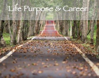 Life Purpose & Career Reading