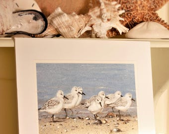 Sanderlings Painting, Shore Birds on the Beach Original Watercolor and Casein Painting by Ezartesa, 15.5 x 15.5 Painting Double Matted.