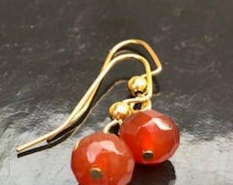 Captivating Carnelian Earrings