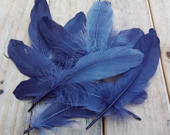 10pc Dark Grey Goose Feathers