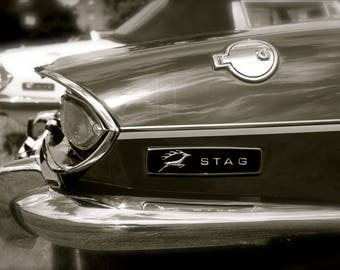 Triumph Stag classic car