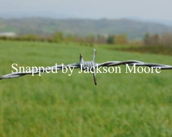 Barbed wire on mountan Photo