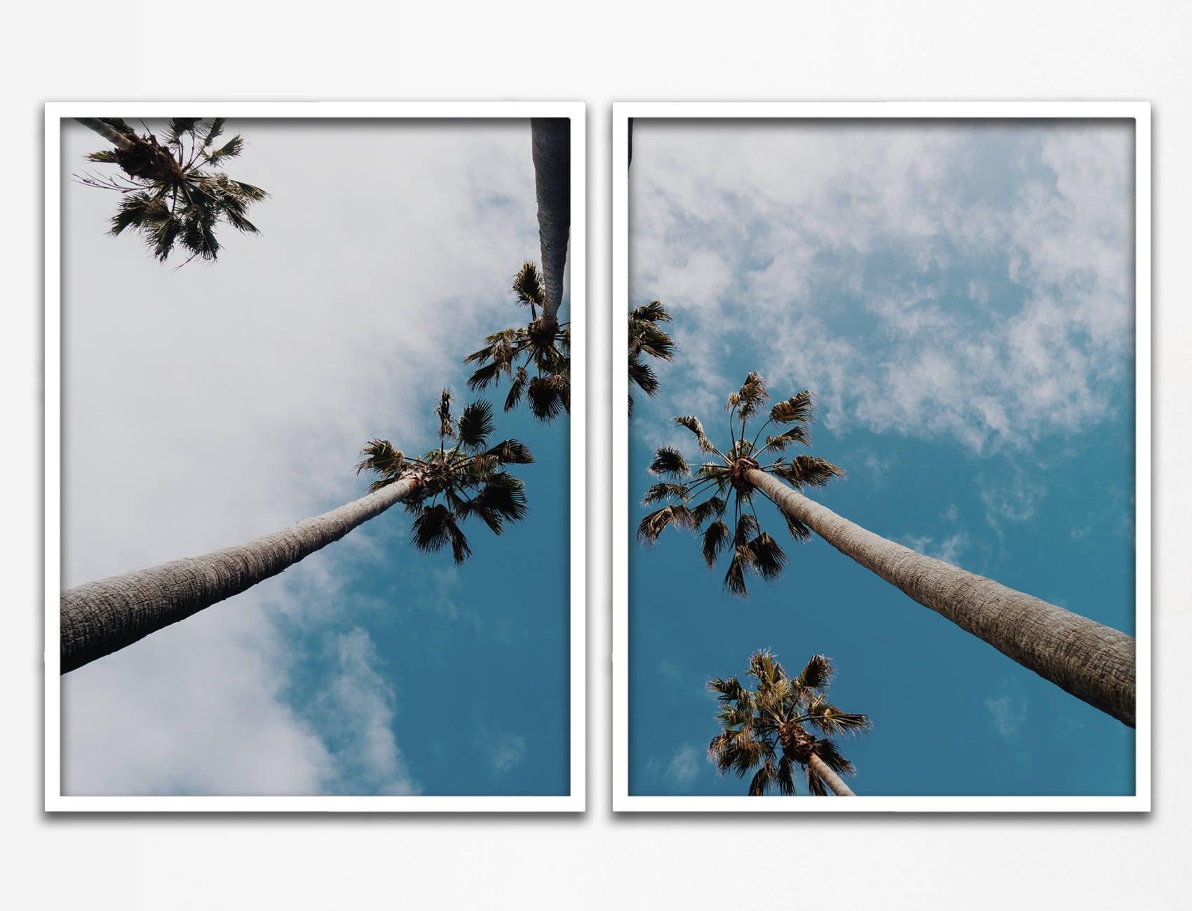 Palm Tree Sky, Palm Tree Art, Palm Tree Wall Art, Palm Tree Print