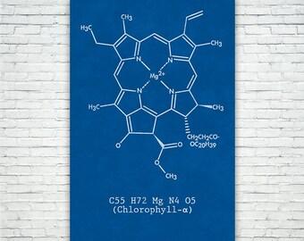 Chlorophyll Molecule Poster Science Print FREE SHIPPING, Chlorophyll, Plant Biology, Plant Life, Botany, Botanist, Scientist, Chemistry Art