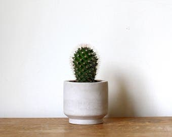 Small Round Concrete Planter // Handmade Cement Planter Perfect for Cacti and Succulent Plants