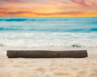 Driftwood on the Beach with Sand, waves, orange sky, and light leak digital background/digital backdrop