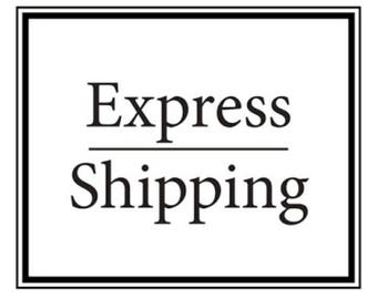 EMS express service with insurance. Upgrade shipping. Estimate delivery 3-10 business day.