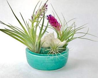 Air Planter Love Birds Bowl