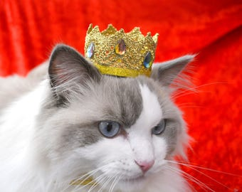 Golden King crown hat for cat with rhinestones - Royal Red Hat for Regal Cats - Royal Crown Hat