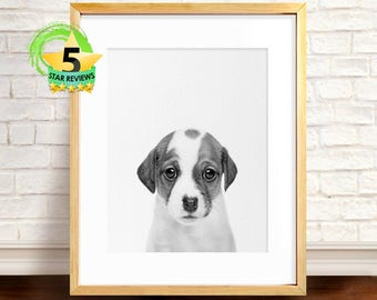 Dog Print, Dog Photo, Dog Printable Art, Dog Decor, Nursery Decor Boy, Dog Wall Art Decor, Nursery Animals, Black and White Wall Art Print