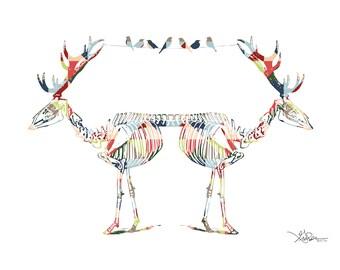 Mirrored Deer