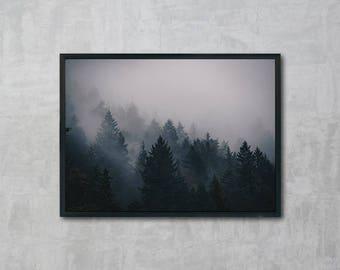 Forest Fog, Cloud Forest Poster, Foggy Forest Wall Art, Instant Download, Modern Art, Digital Print