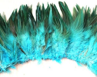 10 beautiful feathers with turquoise reflections