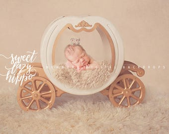 Newborn Digital Backdrop.  Cinderella Carriage or Princess Carriage. Newborn digital prop. Instant download.