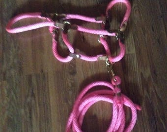 Hot Pink break away derby rope halter and matching 10' lead