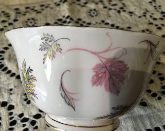 Plant Tuscan China slop bowl English bone china Windswept pattern