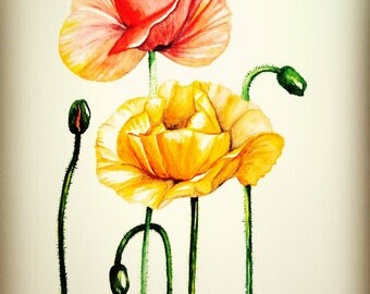 original watercolor painting, botanical art, flower, poppy, home décor, wall décor, handmade artwork, not print,pink,yellow,orange