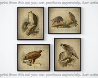 Birds printable, Dictionary art, Print set, Home wall decor, Bird wall art, Eagle print, Set of 4 prints, Vintage, Gift for men, Four prints