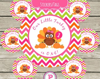 Our Little Turkey is ONE Girl Circle Stickers Party Labels Favor Tags Treat Bag Birthday Fall Fun Pumpkins Balloon Pink Thanksgiving Chevron