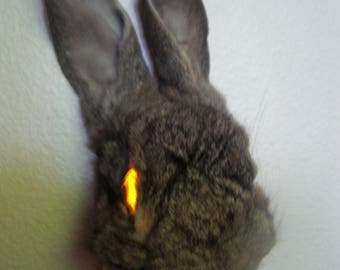 Mummified bunny face night light