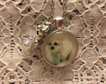 Bichon Frise Puppy Charm Necklace/Bichon Frise Puppy/Bichon Frise Puppy Jewelry/Bichon Frise Jewelry/Bichon Frise Pendant/Bichon Frise