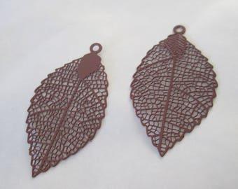 2 prints brown leaf 40 x 21 mm