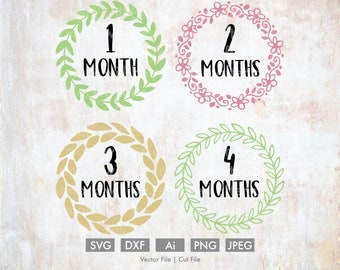 Baby Months 1-4 Svg Bundle - Cut File/Vector, Silhouette, Cricut, SVG, PNG, DXF, Clip Art, Download, Baby, Birthday, Age, one year, Wreath