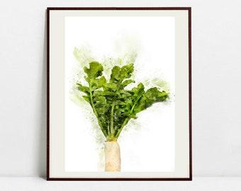 Radish Watercolor Art Print, Radish Cabbage Illustration, Kitchen Wall art, Kitchen Wall Decor, Vegetable Print