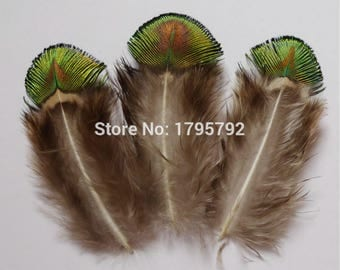 Rare Eolande Green Lustre Feathers