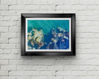 Alaskan Mussel 3 Abstract Fine Art Print, Canvas Gallery Wrap, Water Abstract Fine Art Print, Shellfish Wall Decor, Home Decor,Northwest Art