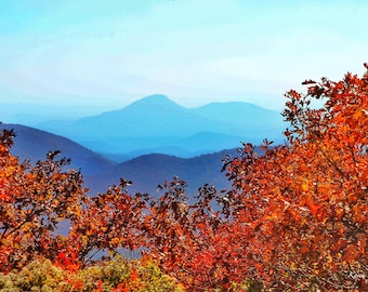 Fall Comes to the Mountains 8x10 Original Photograph