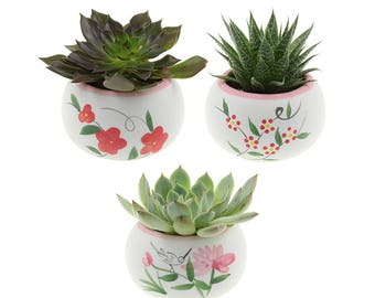 Set of 3 White and Pink Ceramic Planter Pots – Hummingbird, Red Flowers, Red and Yellow Flowers
