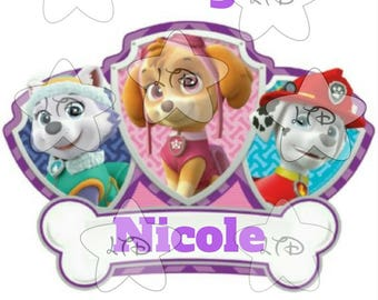 Paw Patrol Birthday Girl Iron On Transfer,Digital Transfer,Digital Iron On,DIY