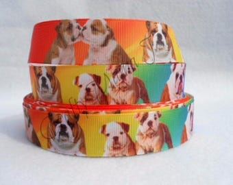"Bulldog Puppies on Multi Color  7/8"" Grosgrain Ribbon by the yard. Choose 3/5/10."