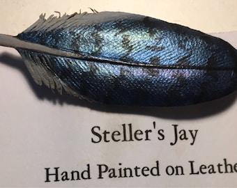 Steller Jay pin