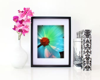 Bright Beauty, Floral Photography, 6x8 matted print, wall art, matted photo, 6x4 print, Flower print, Flower Photo, Modern Art