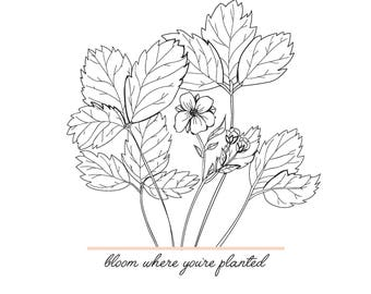 Bloom Where You're Planted Quote Floral 8x10 Print