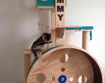 Gym for exercise, cats exercise wheel wheel cats