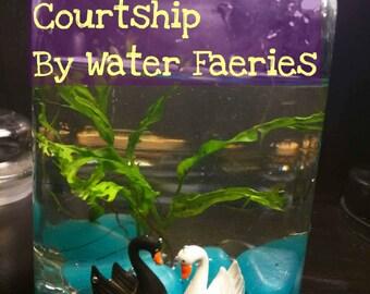 Living Closed Aquatic Ecosystem: Courtship