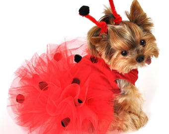 Lady Bug Halloween Dog Costume for Small to Large Dog Breeds