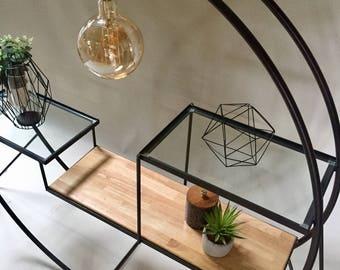 Light fixture with shelves