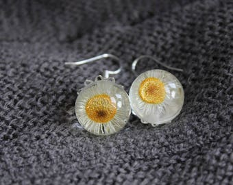 Pierced ears round 1.8 cm resin inclusion of Daisy wild